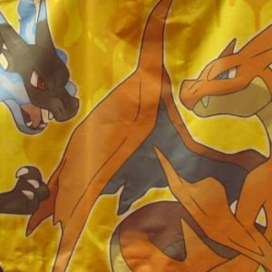 teams_charizardxy